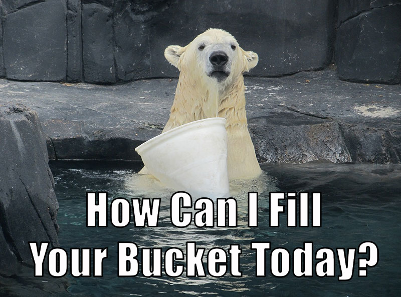 Why You Should Be a Bucket Filler