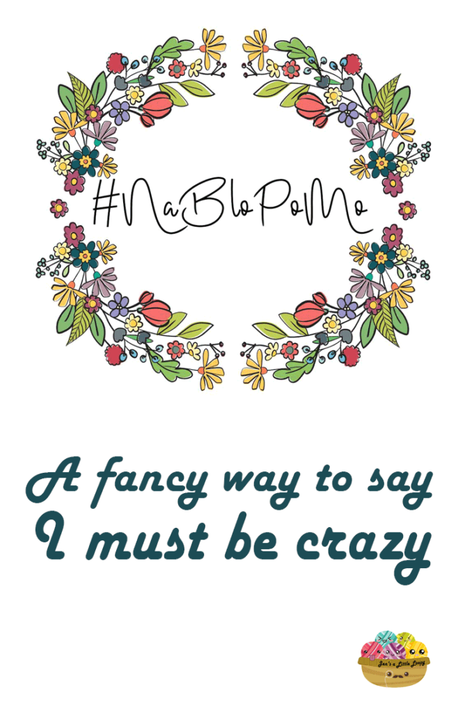 NaBloPoMo is a fancy way to say I must be crazy, but loopy *is* right there in the blog name!